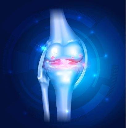 The knee pain revolution review